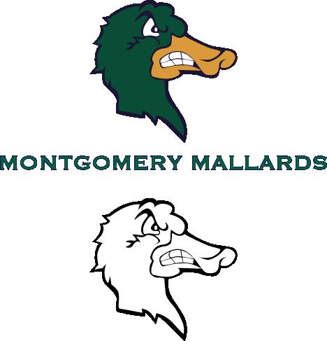 Mallard Baseball Logo
